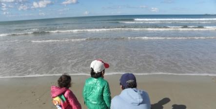 Iad-beach-intro