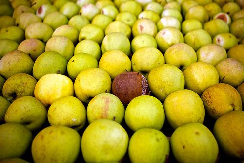 Er-blog-rotten-apple