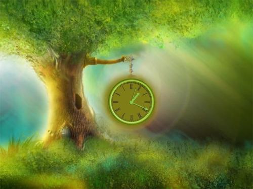 Iad-magic-tree-time