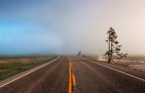 Er-blog-fog-road-ahead