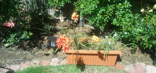 Er-blog-flowerpot