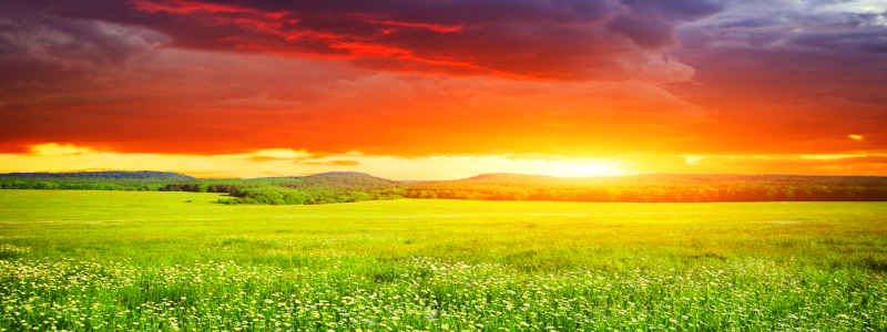Storm sunset meadow blog